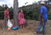 FUNDACIÓN ETEA Y UNIVERSIDAD LOYOLA PUBLICAN EL PLAN ESTRATÉGICO DE DESARROLLO 2015-2019 PARA LA MANCOMUNIDAD PUCA